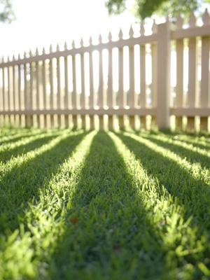 hek zonnestralen gras